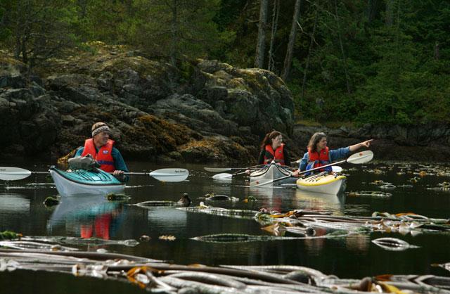 Kayak-Daytrips-BC-1